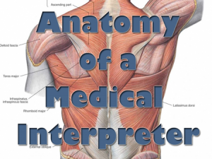 Anatomy of a Medical Interpreter (text overlay on model of human back showing musculature)